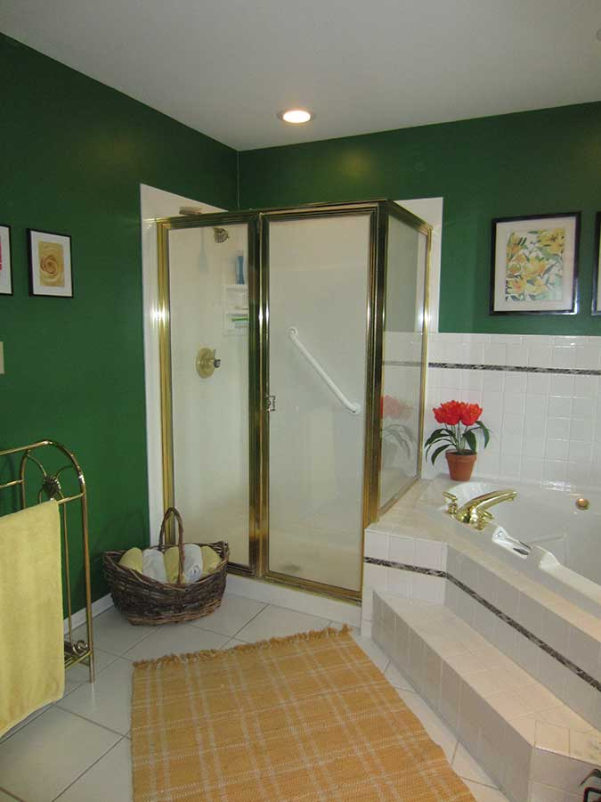 Before - Aging In Place Shower Remodel
